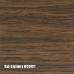 dąb bagienny WDDB01